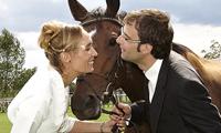 Hochzeitsbilder von Anette und Patrick